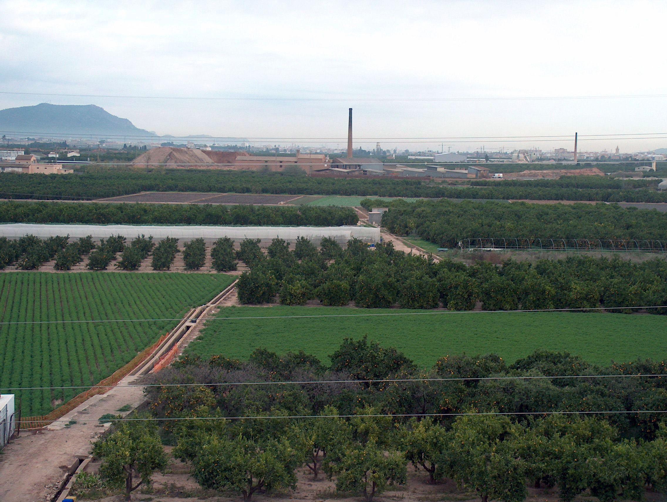 Circuito Horta Nord : Circuito horta nord valencia reunión delegados comarca